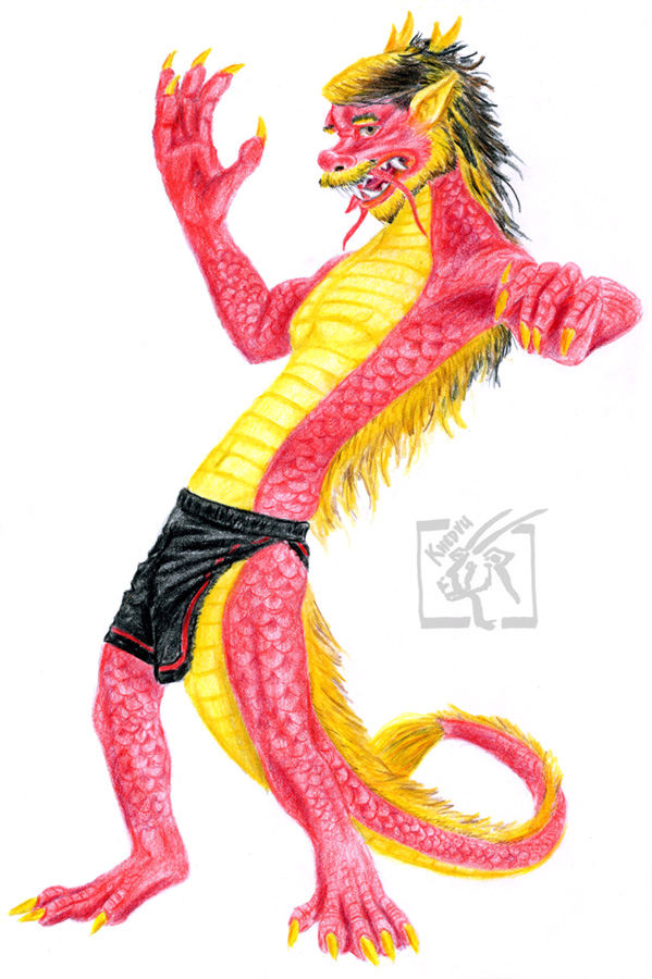 Chinese Dragon - Zodiac Transformation! by Ciervo