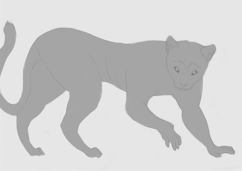 Puma To Anthro Commission By Krazyivan Transfur